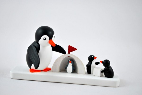Pinguin mit Winterkinder